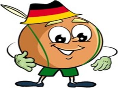 Wyniki Ogólnopolskiego konkursu Deutschfreund 2017